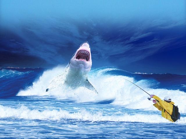 obrovský žralok